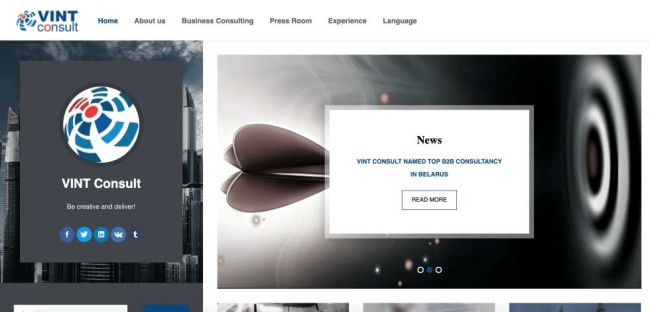 Vint Consult website